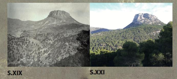 Sierra Espuña antes y despues
