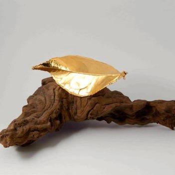 Paparajote de oro