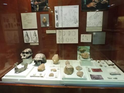 Museo Siyasa Cieza