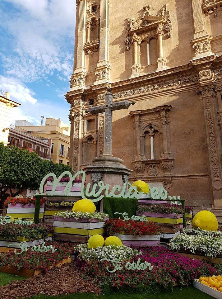37c999600 Jardines de primavera como en años anteriores donde los murcianos y demás  visitantes podrán disfrutar de la belleza de la ciudad y sus decoraciones.